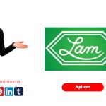 Laboratorios de Aplicaciones Medicas (LAM)