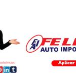 Felix Auto Import