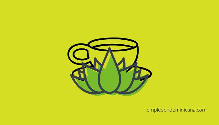 ¡Salud! ¿Qué sabes sobre el té de sen?