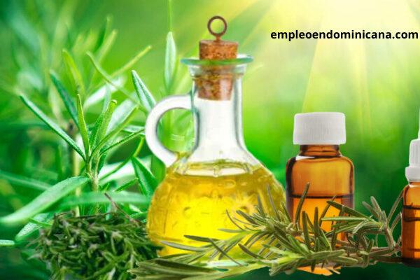 Secreto para hacer crecer tu pelo: aceite de romero