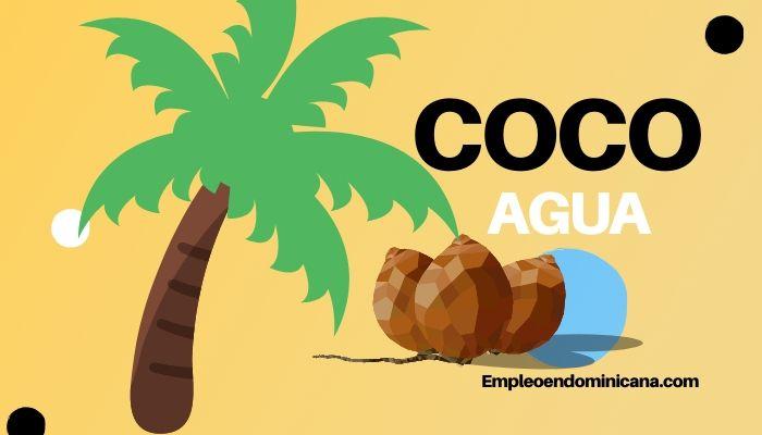 3 razones para tomar agua de coco que debes conocer