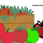Conoce las propiedades de esta fruta de invierno: manzana